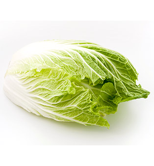 CHINA LONG CABBAGE (DA BAI CAI) 1.6-2KG