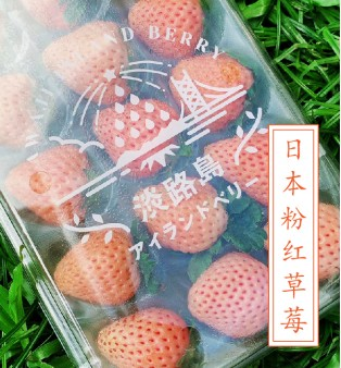 Premium Pink Strawberry (Japan) (Pre order)