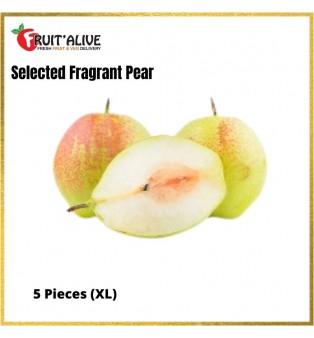 XIN JIANG FRAGANCE PEAR (5PCS)