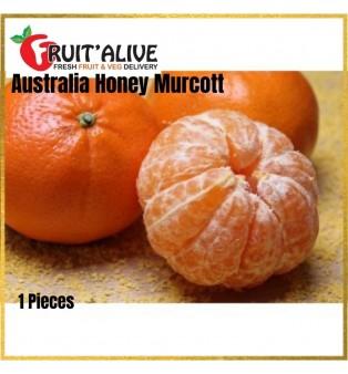 AUSTRALIA HONEY MURCOTT