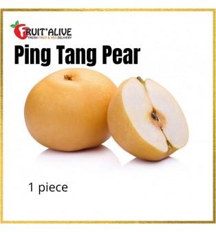 PING TANG PEAR CHINA