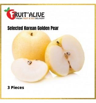 KOREAN GOLDEN PEAR