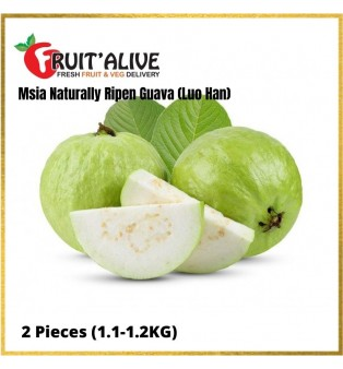 GUAVA MALAYSIA (LUO HAN) 650G-800G