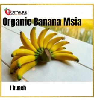 ORGANIC BANANA MALAYSIA (1 BUNCH)