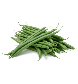 BABY FRENCH BEAN INDONESIA