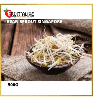 BEAN SPROUT SINGAPORE (500G)