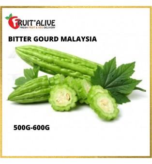 BITTER GOURD MALAYSIA (500-600G)