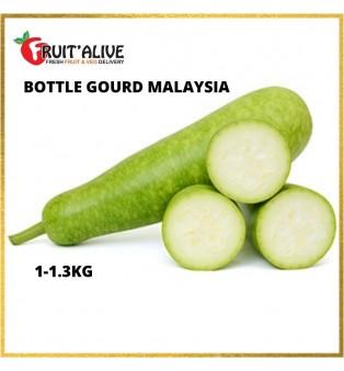 BOTTLE GOURD MALAYSIA (1KG-1.3KG)