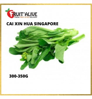CAI XIN HUA SINGAPORE (300-350G)
