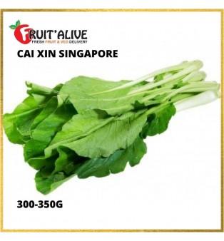 CAI XIN SINGAPORE (300-350G)