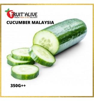 CUCUMBER MALAYSIA (350G)