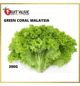 GREEN CORAL MALAYSIA (300G)