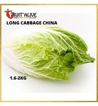 CHINA LONG CABBAGE (DA BAI CAI) 1.6-2KG