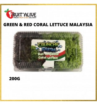 GREEN & RED CORAL LETTUCE MALAYSIA (200G)