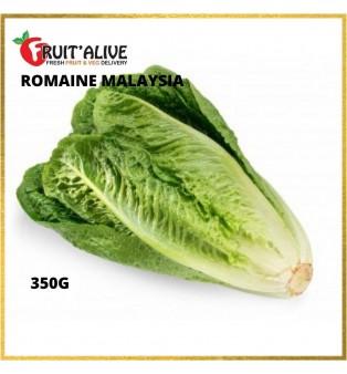 ROMAINE MALAYSIA (350G)