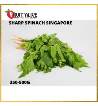 SHARP SPINACH SINGAPORE (350-500G)