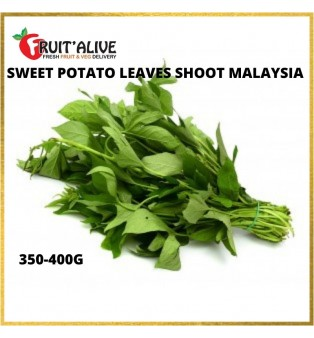 SWEET POTATO LEAVES SHOOT MALAYSIA (350-400G)