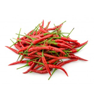 RED CHILLI PADI VIETNAM (100G)